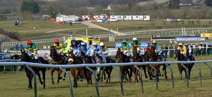 2010 Cheltenham Festival Cross Country Chase