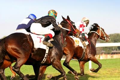 3 Horse Race