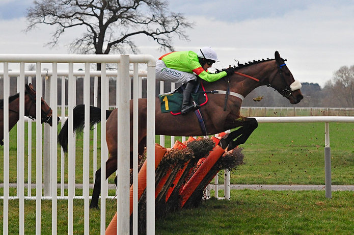 Horse Jumping Hurdle at Bangor Racecourse