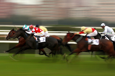 Blurred Horse Racing Finish