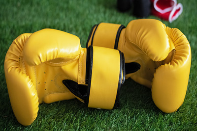 Boxing Gloves on Grass