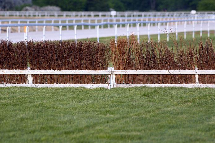 Brushwood Horse Fence