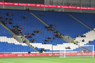 Cardiff City Stadium During FA Cup Third Round Match