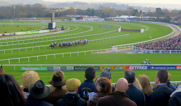 Cheltenham Horse Race From Stands