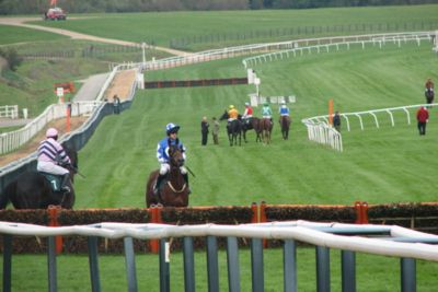 Cheltenham Hurdle Race