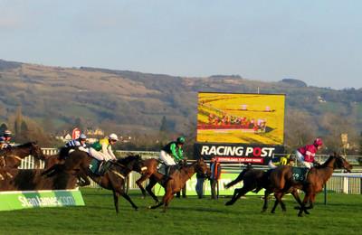 Cheltenham Racecourse Chase