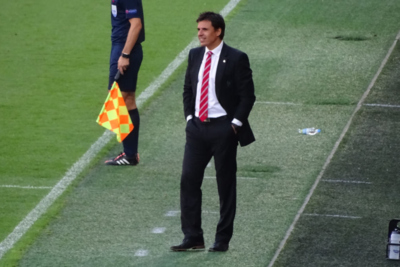 Chris Coleman On Pitch Sidelines