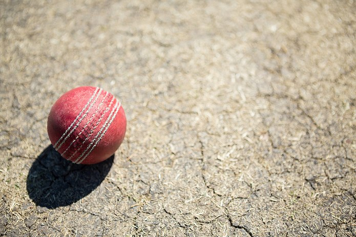 Cricket Ball On Dry Pitch