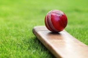 Cricket ball on bat
