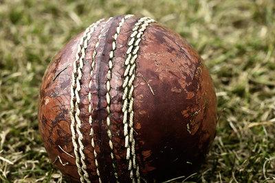 Cricket Ball on Grass