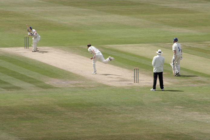 Cricket Batsmen and Bowler