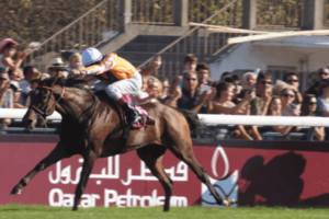 Danedream Winning 2011 Prix De L'Arc De Triomphe