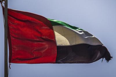 Dubai Flag