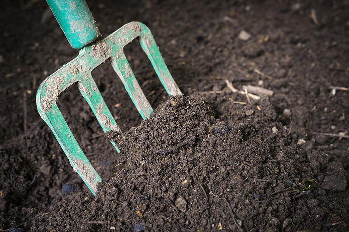 Fork Turning Soil