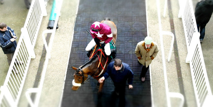 Gigginstown Horse at Aintree