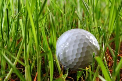 Golf Ball in Long Grass