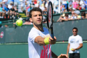 Gregor Dimitrov Playing Tennis Backhand Shot