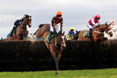 Group of Racehorses Jumping a Fence