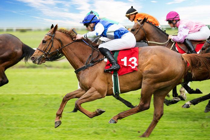 Horse Race with Jockeys Wearing Coloured Silks