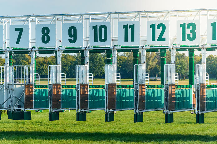Horse Race Starting Gate Showing Berths 7 to 13