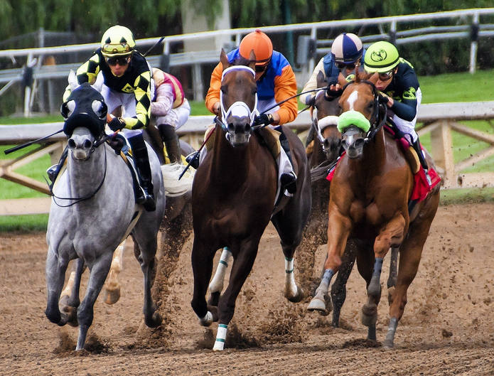 Horse Race in the US