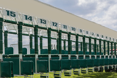 Horse Racing Starting Gate Numbers