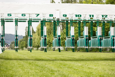 Horse Racing Starting Stalls