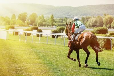Horse Racing Towards Sunshine