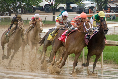 Horse Racing in Mud