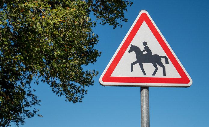 Horse Warning Triangle