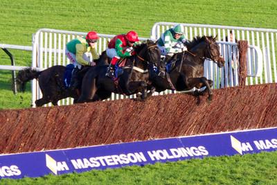 Horses Jumping Fence at Cheltenham