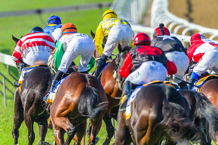 Horses Racing Into the Home Straight