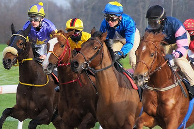 Horses Racing in a Group
