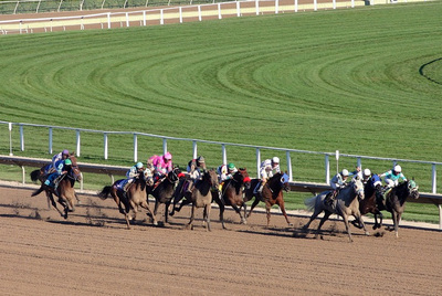 Horses Racing in a Group on Dirt