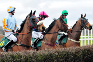 Horses Waiting at a National Hunt Fence