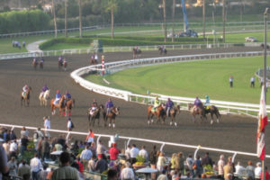 Horses on Track at the Breeders Cup