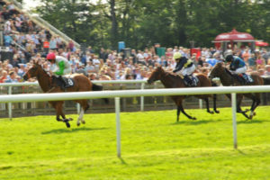 Newmarket Horse Race