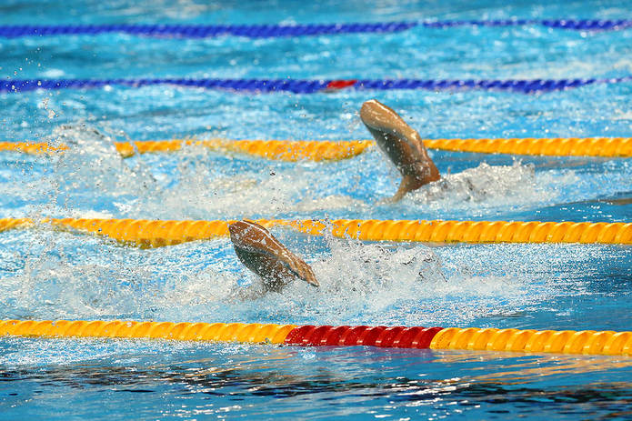 Olympic Swimmers Neck and Neck