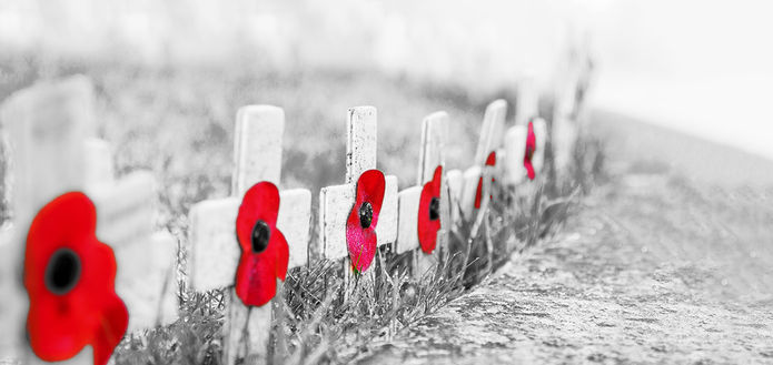 Poppies on Crosses