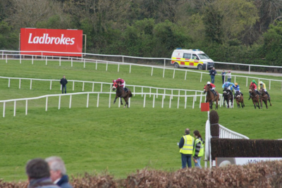 Horse Race at Punchestown Racecourse