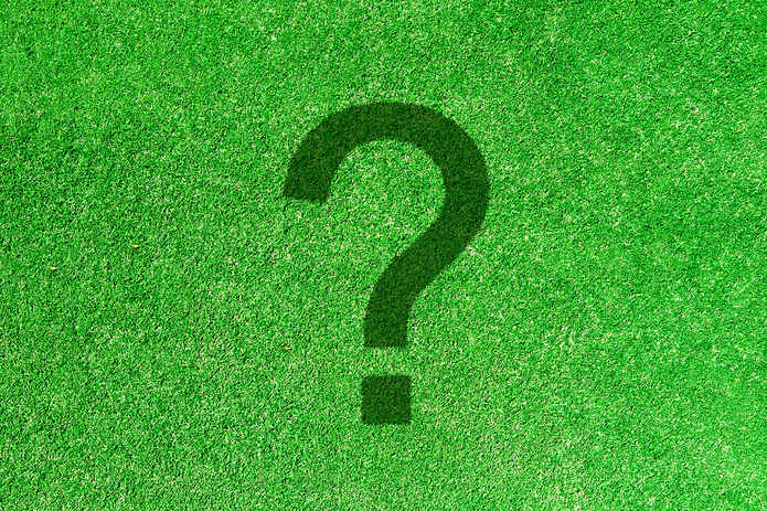 Question Mark on Grass