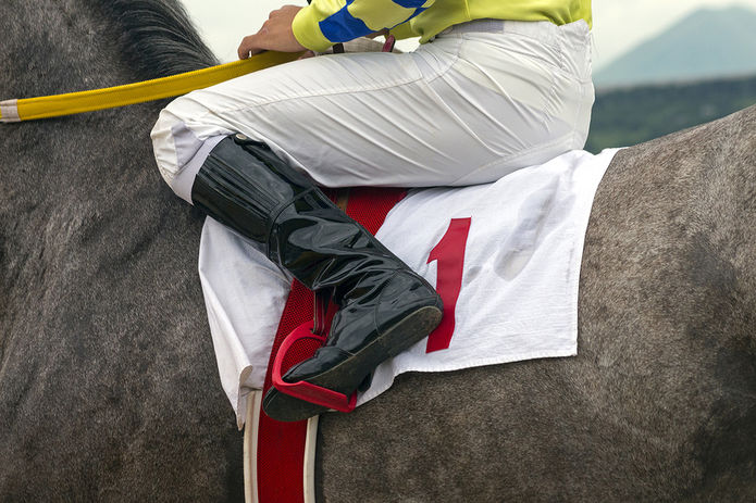 Racehorse and Jockey with Number 1 Cloth