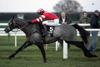Richard Johnson Riding Racehorse