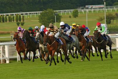 Sandown Horse Race