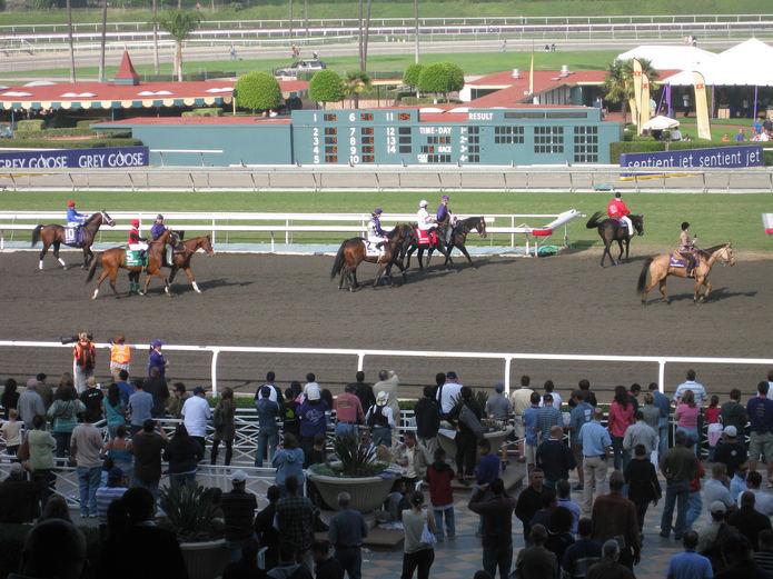 Horses on Track at Santa Anita
