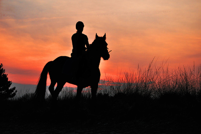 Silhouette of Horse Rider at Sunset