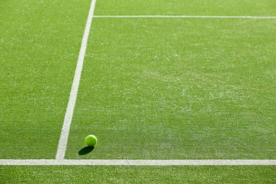 Tennis Ball on Grass Court