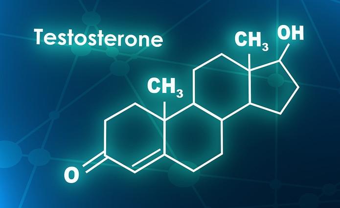 Testosterone Molecule Diagram