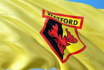Watford FC Flag