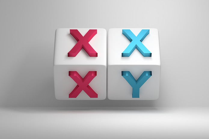 X and Y Chromosome Cubes